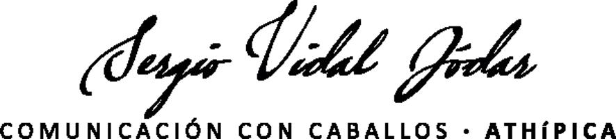 Sergio Vidal Jódar